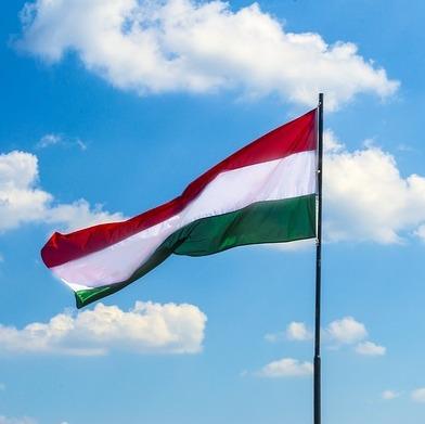 Weigering overlevering aan Hongarije | Uitlevering Cleerdin & Hamer advocaten